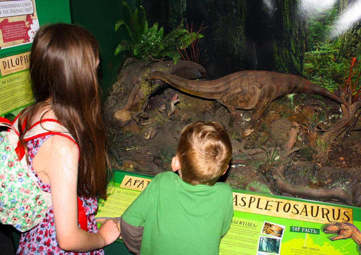Scale Dinosaur Scenes