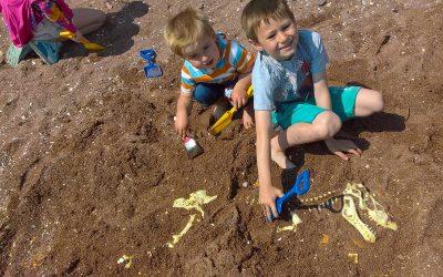 Beach Dinosaur Fossil Hunt