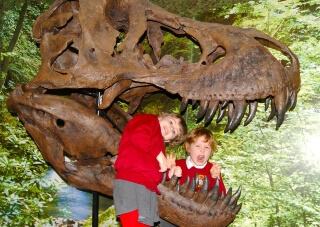 Dare you put your head inside the T-Rex skull!