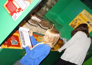 Learn about dinosaurs with our School Visit Workbook.