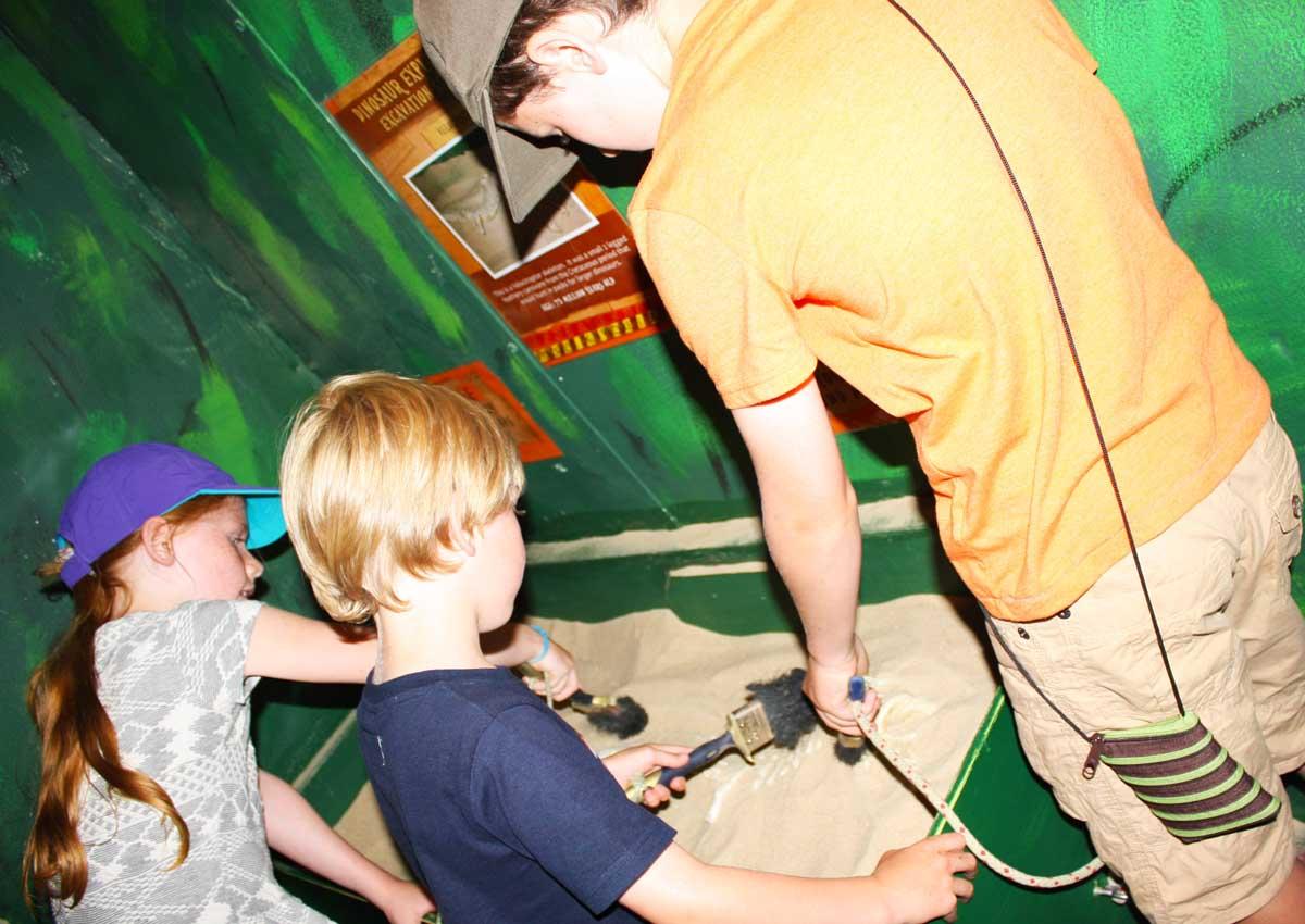 Explorers Discover Fossils