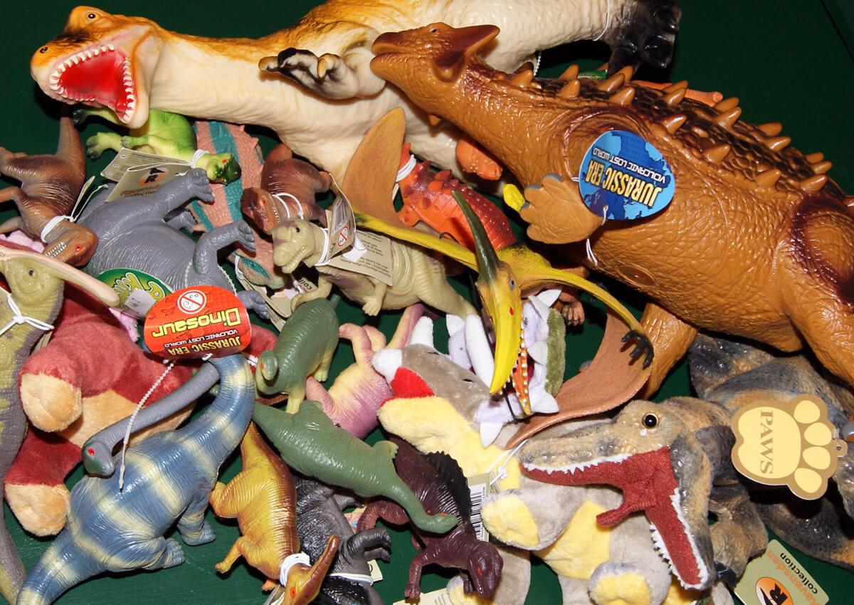 Pick up a souvenir dinosaur DVD!