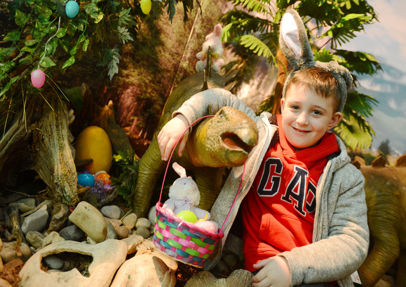 What's on at Dinosaur World?